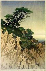 Lum | Point Lobos