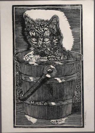 Ballen | Cat in Bucket