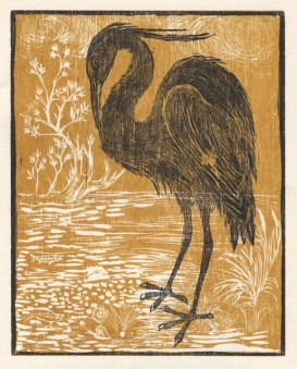 Siegel | Aesop's Bird