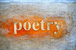 Reading Poetry | Massimo Soranzio