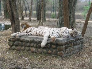 Bannerghatta Park