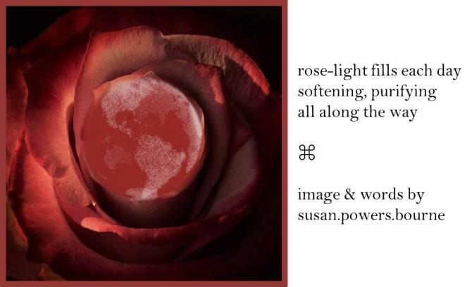 rose-light