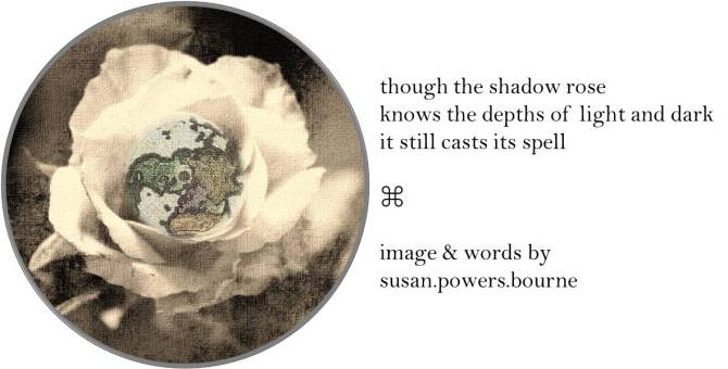 shadow-rose