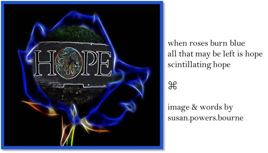 when-roses-burn