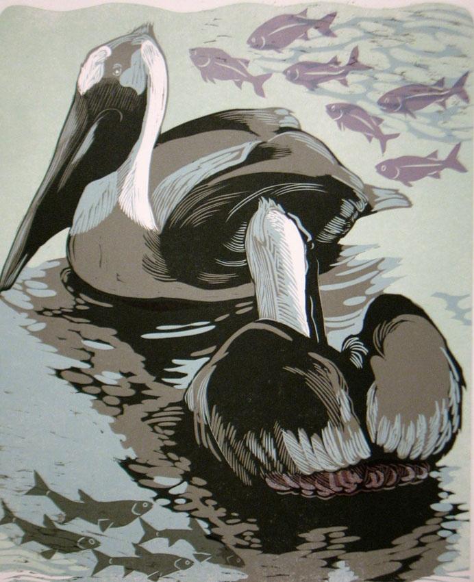 Beckman Dreaming Pelicans