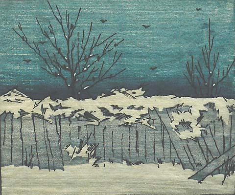 Colwell Fence in Winter