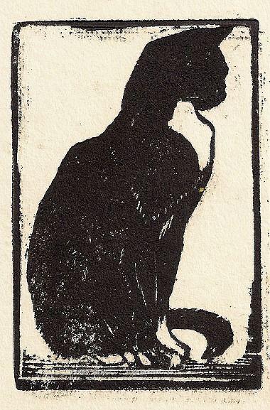 Royds Cat