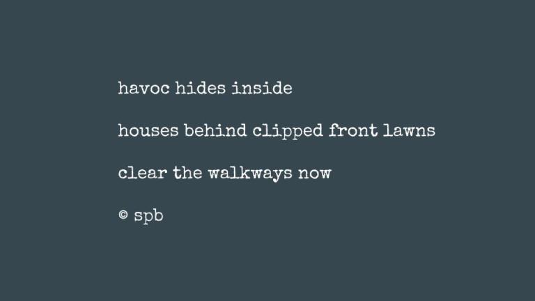 havoc hides